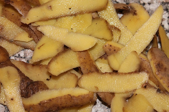 Kornútky zo zemiakových šupiek: biznis šikovných študentov